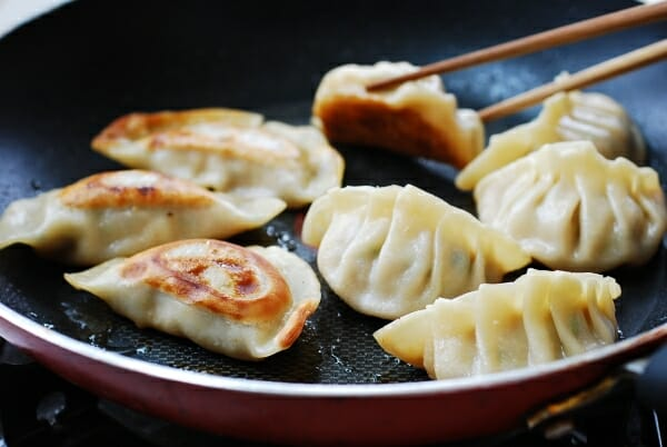 How to pan fry dumplings