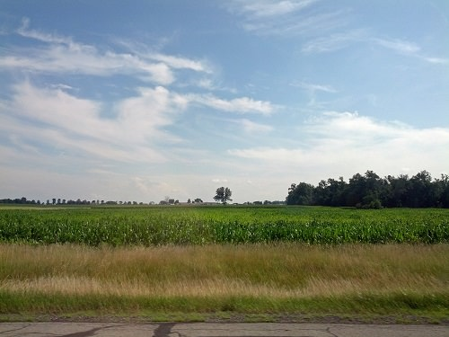 Ohio cornfields - A Few of My Favorite Things This Summer