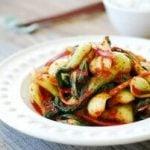 DSC 08551 300x201 1 150x150 - Baby Bok Choy Kimchi Salad (Geotjeori)