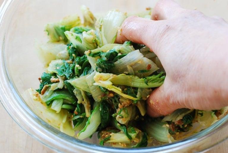 DSC 1359 768x514 - Putbaechu (Young Cabbage) Doenjang Muchim